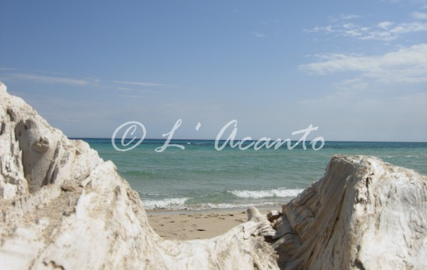 learning Italian in Summer in Puglia