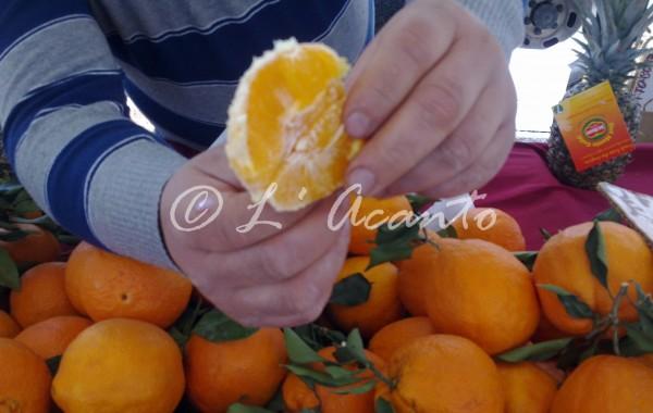 tasting a fresh orange