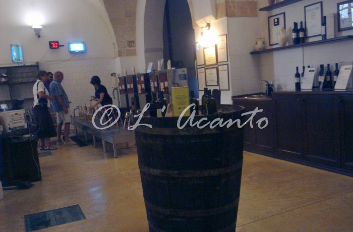 visiting a wine cooperative